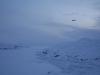 c.holden_arctic.132.jpg